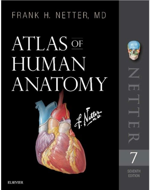 Download Netters Atlas Of Human Anatomy 7th Edition Pdf Free Usmle
